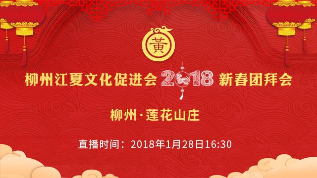 柳州江夏文化促进会2018新春团拜会(图1)